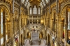 Top 10 Free Museums in London