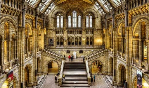 Main hall of London's Natural History Museum