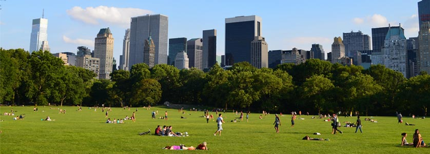 The Great Lawn at Central Park, New York